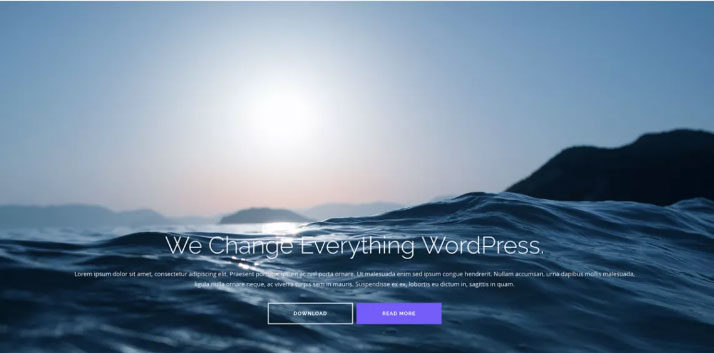 Shapely download wordpress themes